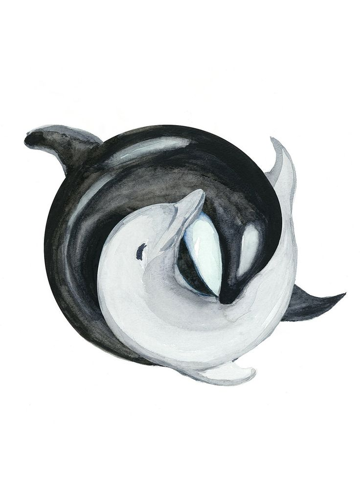 Orca and a Dolphin in YinYang Watercolor Painting by EnviousV
