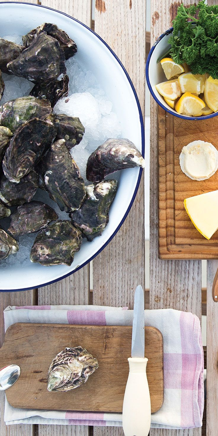 Shucking oysters on the Mahurangi Oyster Farm Tour - by Cindy Chen