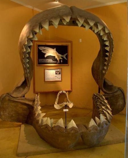 #Colchagua Museum - #colchaguatours | Colchagua Tours