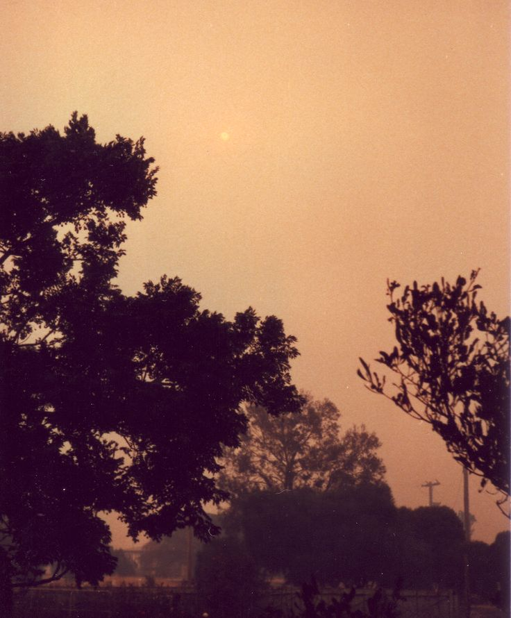 Smoke and ash drift over Edenhope from the fires in the pine plantations of south-east South Australia. Ash Wednesday Bushfires 16th February 1983.