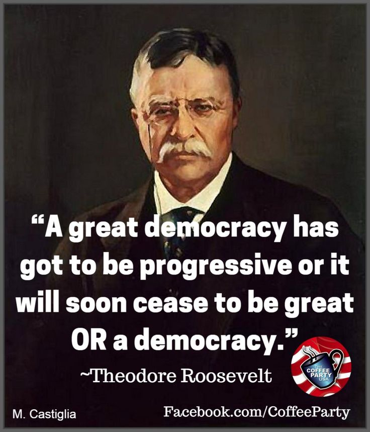 """""""A great democracy has got to be progressive or it will soon cease to be great or a democracy.""""  ~ Theodore Roosevelt"""