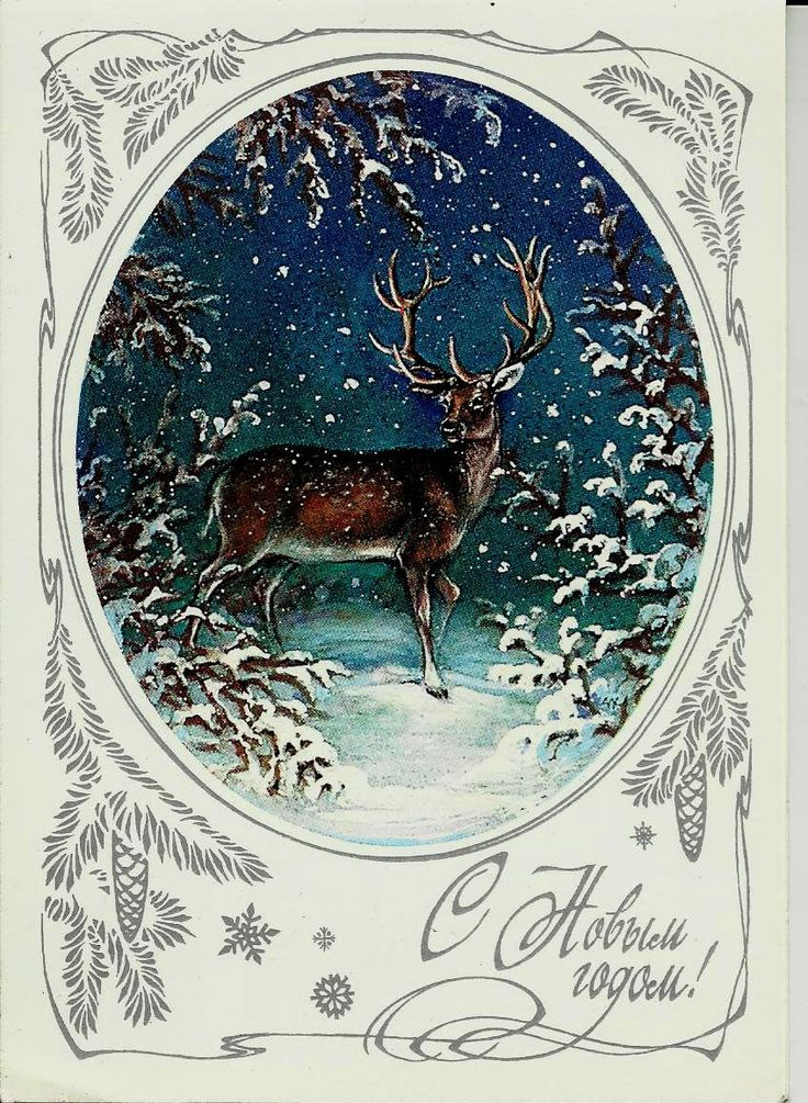 Deer in winter forest - Russian Vintage Postcard - Happy New Year unused by LucyMarket on Etsy