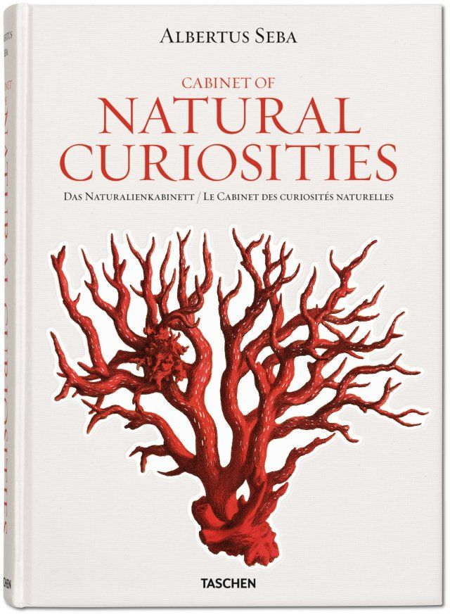 Albertus Seba. Natural Curiosities