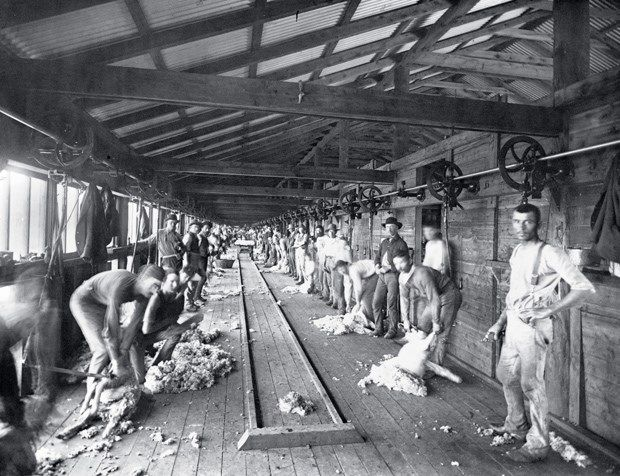 Shearing board, Burrawang station. Burrawang began in 1836 as a squatters' run and by 1866 it covered more than 2000sq.km between Forbes and Condobolin in central-western NSW. The station became legendary for its record wool clip (5000 bales in 1884) and its enormous shearing shed, which employed more than 250 men. The station was the scene of a labour dispute during the depression of 1893.