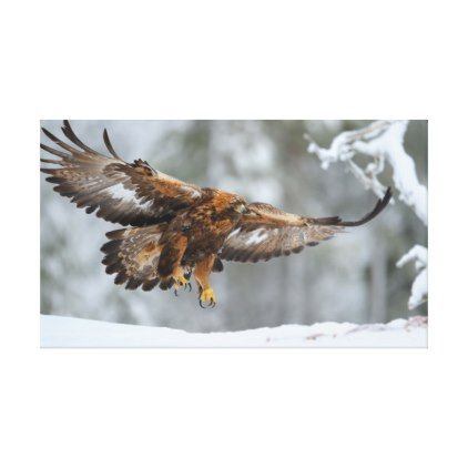 Golden Eagle photo Canvas Print - golden gifts gold unique style cyo