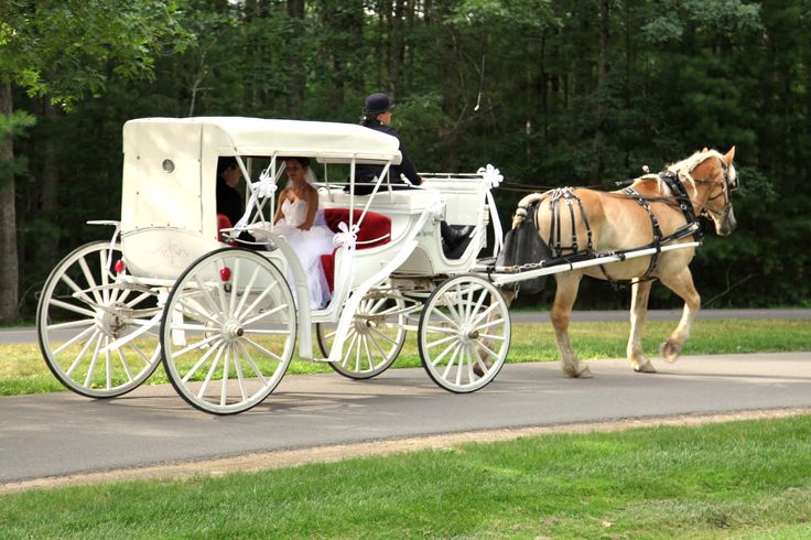 Newlyweds off to their #honeymoon in one of our vis-a-vis carriages. #weddings (image courtesy of Kelly Carrico Photography kellycarricophotography.com)