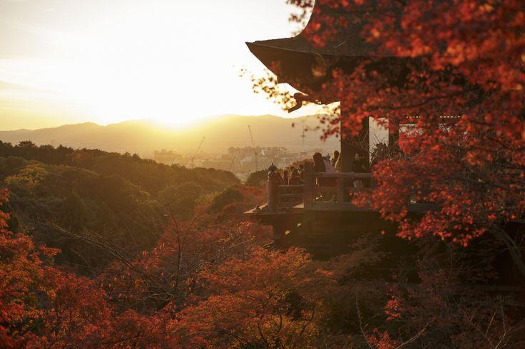 観る清水寺
