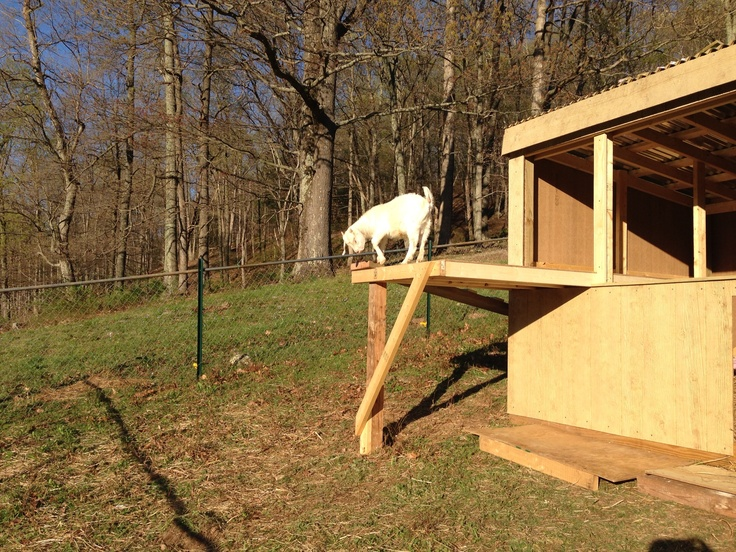17 Best Images About Loafing Shed On Pinterest Shelters
