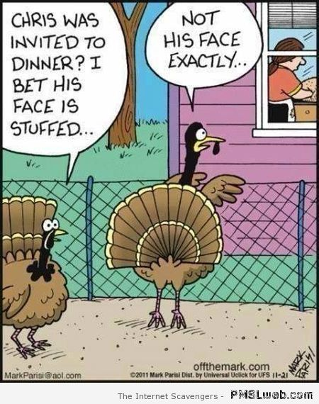 Thanksgiving funnies – A humoristic holiday treat | PMSLweb