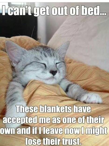 hahaha! Everyday