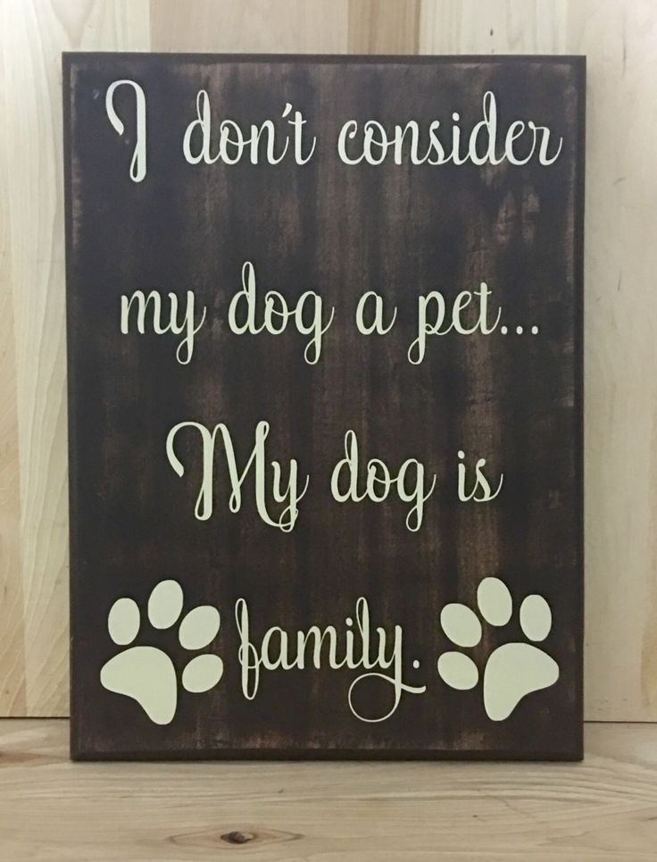A personal favorite from my Etsy shop https://www.etsy.com/listing/279345086/my-dog-wood-sign-gift-for-pet-lover-gift