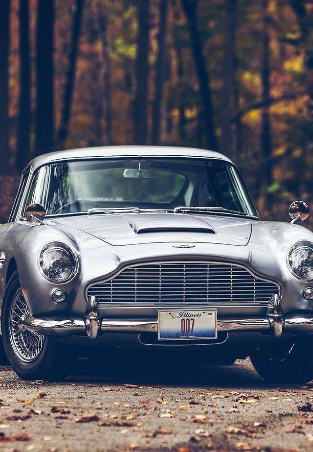 Aston Martin DB5. Will acquire one day