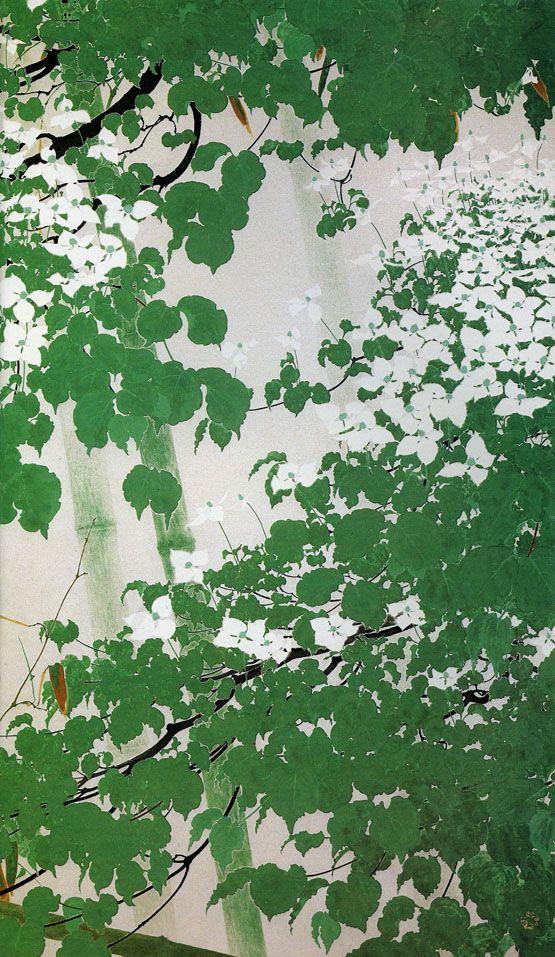 白い花(R) Isson Tanaka
