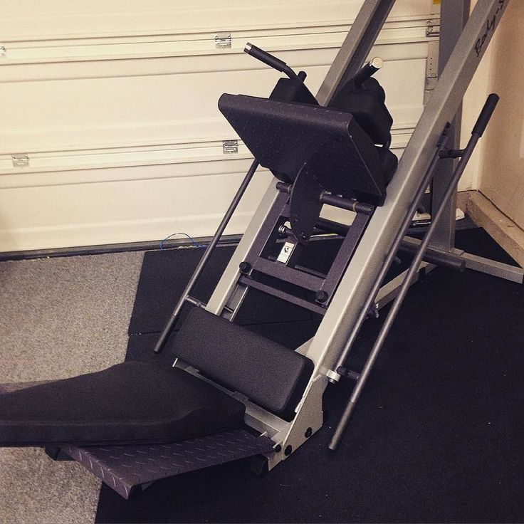 pro sissy squat machine adjustable hd