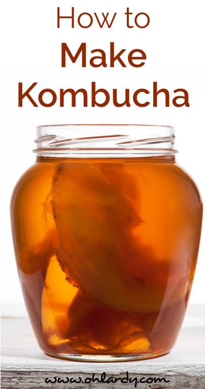 How to Easily Make Kombucha Tea - Oh Lardy! :: Want some simple tips to help you learn how to #ferment foods at home? Join our email series that will teach you everything you need to know: https://il313.infusionsoft.com/app/form/8c0057a0e3f4312eca3433b52efd0d2b