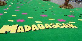 Madagascar Film Premier Carpet