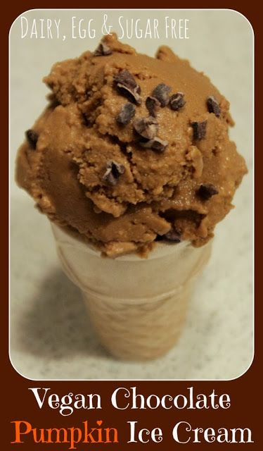 MamaEatsClean: Vegan Chocolate Pumpkin Ice Cream - Paleo and Anti-Candida diet friendly. OMG - this is so good. Amazing if you haven't had the real thing for a while.