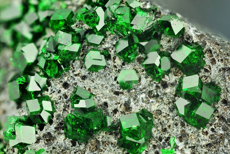 This is Uvarovite, a rare mineral often confused with Emerald for its deep green colour /  Mineral Friends <3