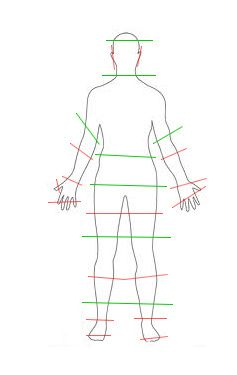 Photography Limb crops:  Don't crop at the red lines  ;)