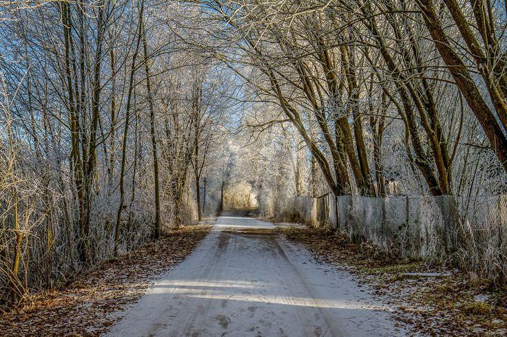 ... a winterway near Ulm
