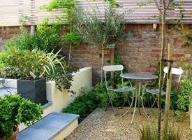 Piccoli giardini: come realizzare piccoli spazi verdi