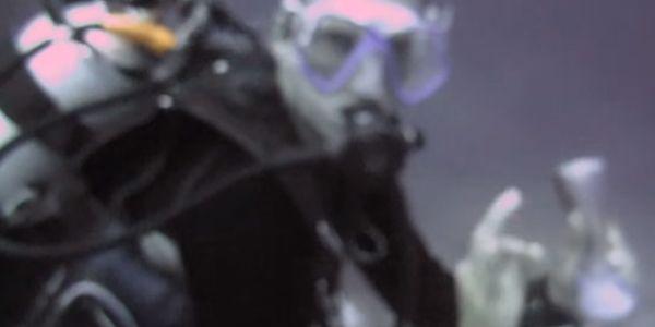 Durante uma sessão de mergulho numa ilha na Papua Nova Guiné, dois mergulhadores decidiram levar uma garrafa de plástico para criar sons e vibrações que atraíssem os tubarões. Sem dúvida que esta técnica resulta, uma …