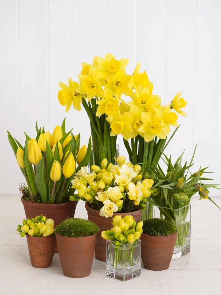 A tiered array of one hue is springy and sophisticated. Here, yellow fritillaria, tulips, freesias and daffodils tucked into a mixture of terra cotta pots and glass vases combine to make a stunning focal point for an Easter table or spring celebration.