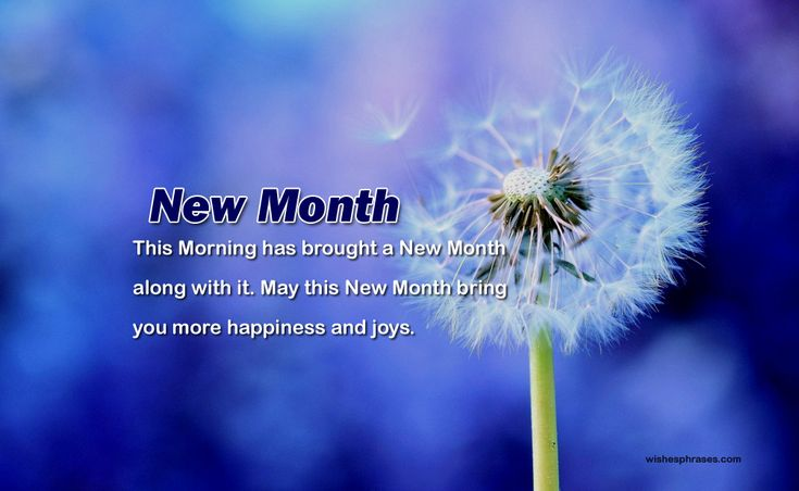 After every few days there comes a new month and Happy New Month Wishes also come along which brings a new hope a new aggression to live within us we set new goals