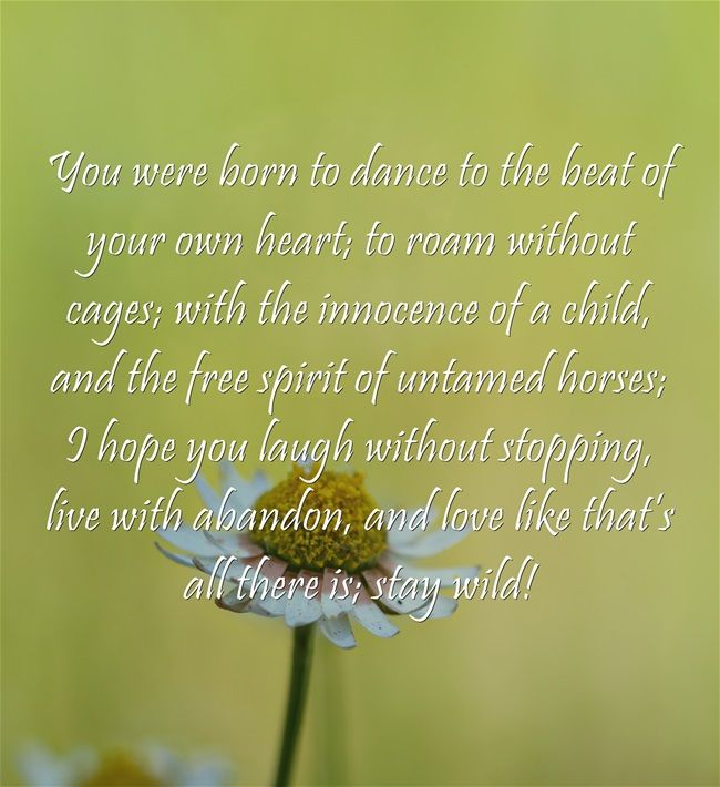 You were born to dance to the beat of your own heart; to roam without cages; with the innocence of a child, and the free spirit of untamed horses; I hope you laugh without stopping, live with abandon, and love like that's all there is; stay wild!