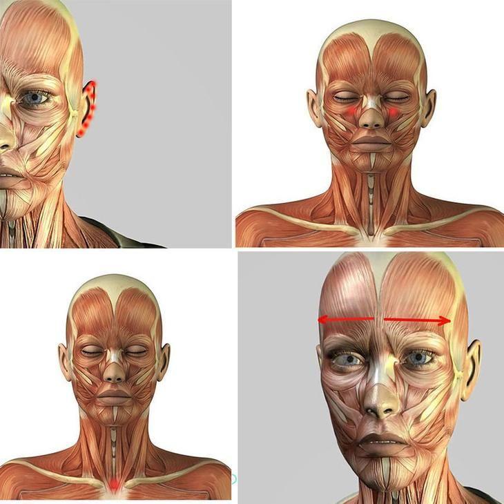Выражение «как рукой сняло» возникло не на пустом месте. С помощью воздействия на биологически активные точки можно помочь организму избавиться от повышенного аппетита, головной боли, укрепить иммунит...