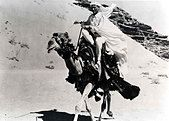 Lawrence Von Arabien Lawrence Of Arabia Peter O'Toole *** Local Caption *** 1962 -- - Stock Photo