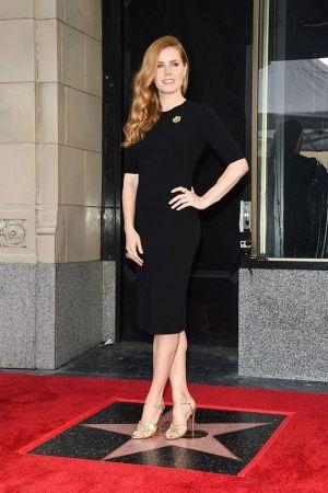 ТОнеТО   Эми Адамс удостоилась собственной звезды на Аллее славы   Новости про товары, услуги, компании, технологии