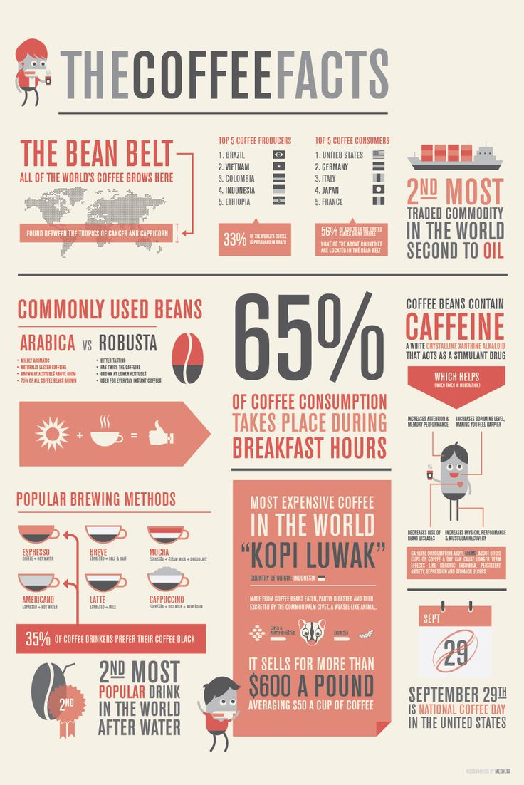 The Coffee Facts [INFOGRAPHIC]Coffe Infographic, Graphics Design, Fun Facts, Facts Infographic, Coffe Beans, Infographics, Coffe Facts, Info Graphics, Coffee Facts