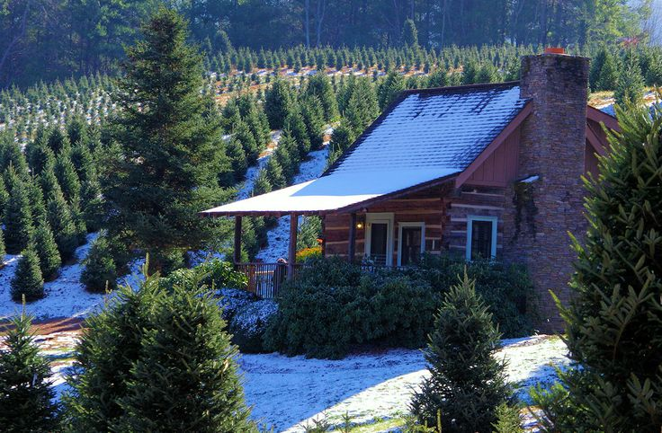 Romantic log cabin rental in the North Carolina Smoky mountains near Asheville.