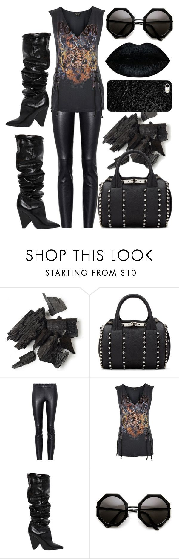 """That girl is poison"" by ladybug71181 ❤ liked on Polyvore featuring Alexander Wang, STOULS, Topshop and Yves Saint Laurent"