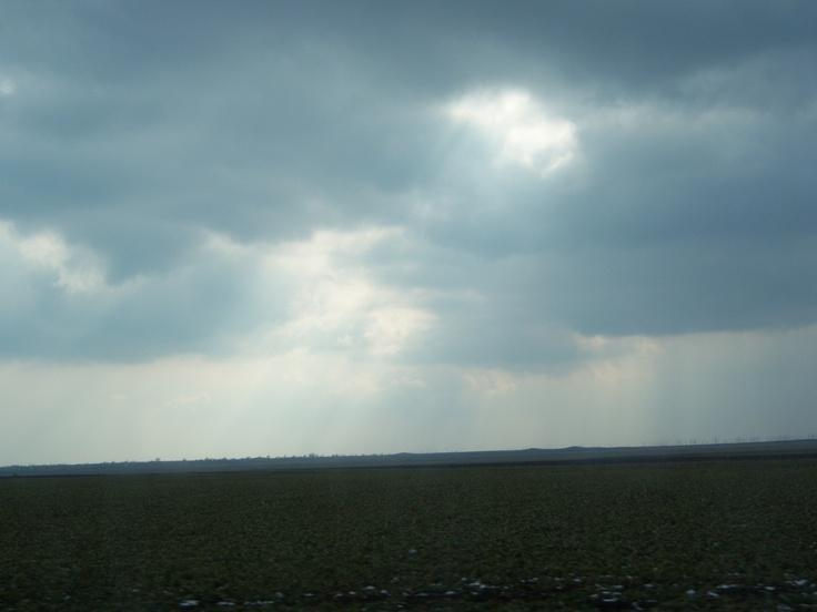 nori peste campie.jpg