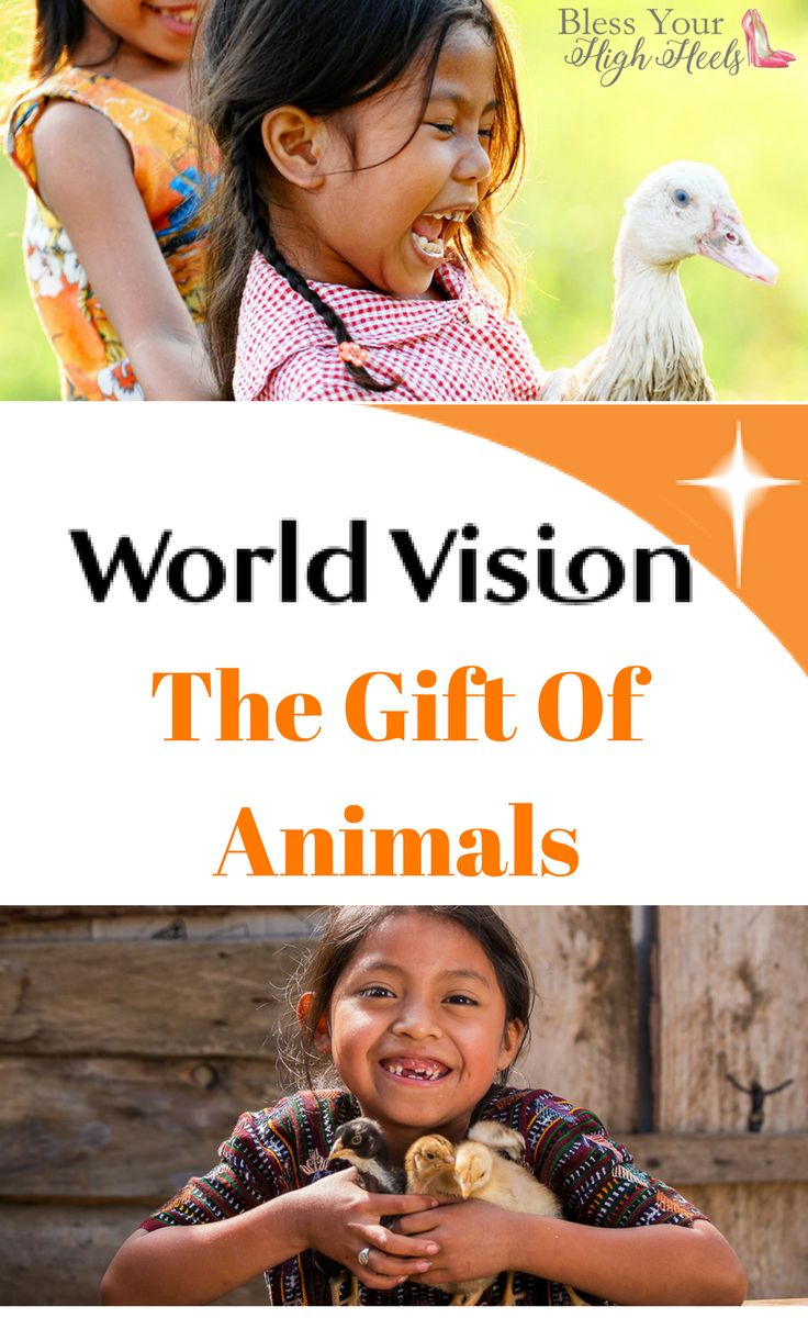 The Gift Of Poverty Fighting Animals changes lives in the World Vision Gift Catalog.