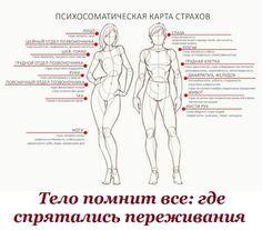 img1.liveinternet.ru images attach c 8 125 696 125696471_telo.jpg