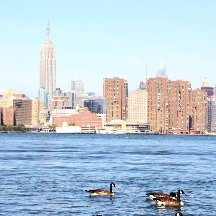 50 activités gratuites à New York : le guide ultime !