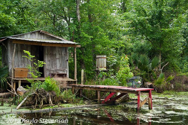 10 images about louisiana swamp pictures on pinterest for Fishing cabins in louisiana