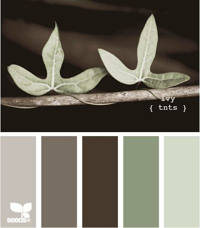 The cooler side of earth tones.