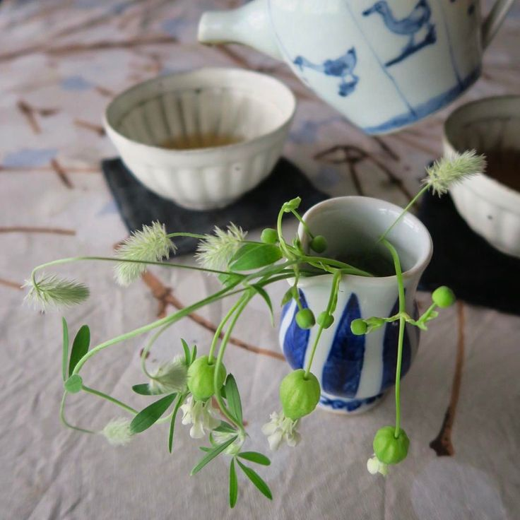 61 vind-ik-leuks, 1 reacties - Fusako Egi (@kiibowbow) op Instagram: '大好きなコーヒー豆 マラウイが次回入荷未定だとか。 さて、どうしようかとお紅茶を飲んで考えよう。  I can't wait for SAKURA bloom.  染付あひる図ポット…'