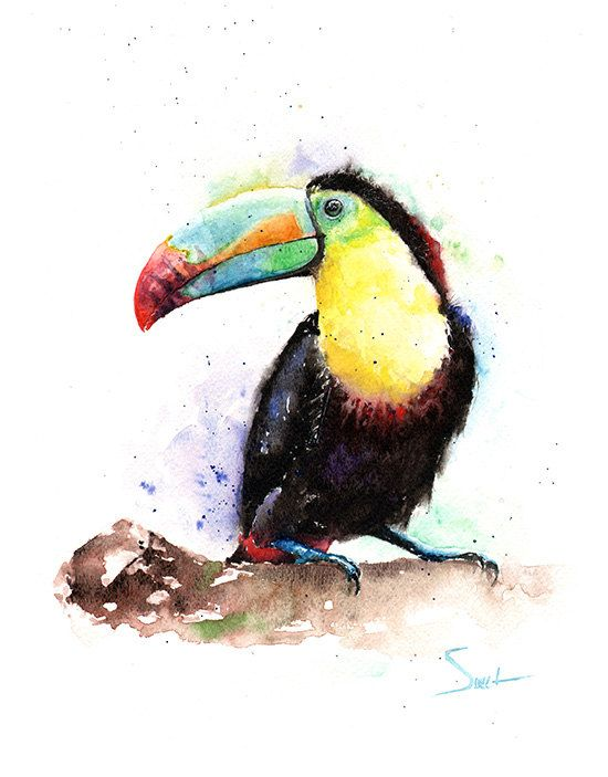 Hey, I found this really awesome Etsy listing at https://www.etsy.com/listing/223897076/watercolor-toucan-painting-original-bird