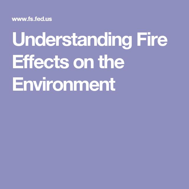 Understanding Fire Effects on the Environment