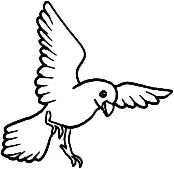 Free Bird Coloring Pages For Your Kids | Bird coloring pages ...