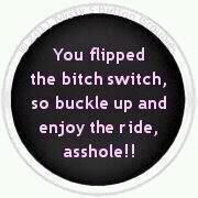 Ain't it the truth!!!: Bitch Switch, Quotes,  Hockey Puck, Funny Stuff, Bumper Stickers, Funnies, Things, True Stories, Bitchswitch