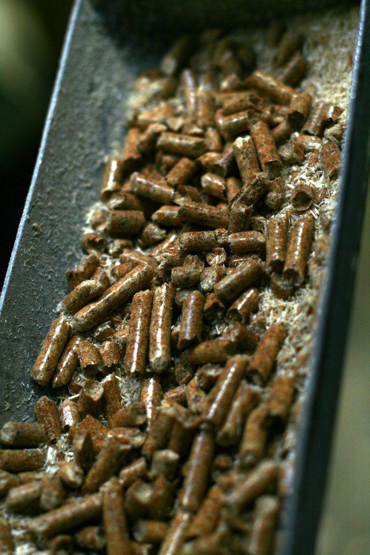 Próbka pelletu pobrana w czasie produkcji