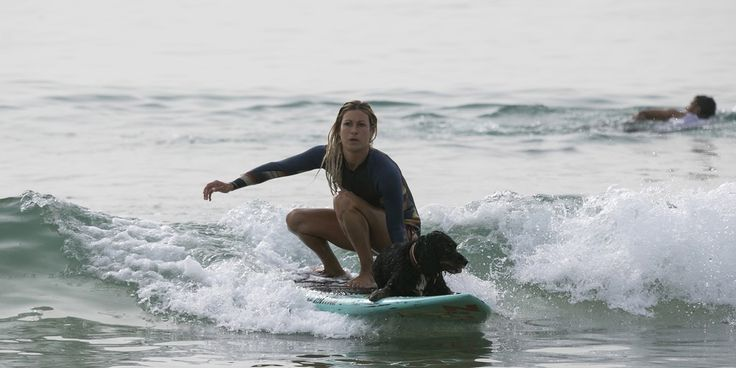 Cette femme surfe avec son chien sur une plage de Tel Aviv, en Israël. http://www.parismatch.com/Animal-Story/Photos/Une-semaine-chez-les-animaux-769892#771332