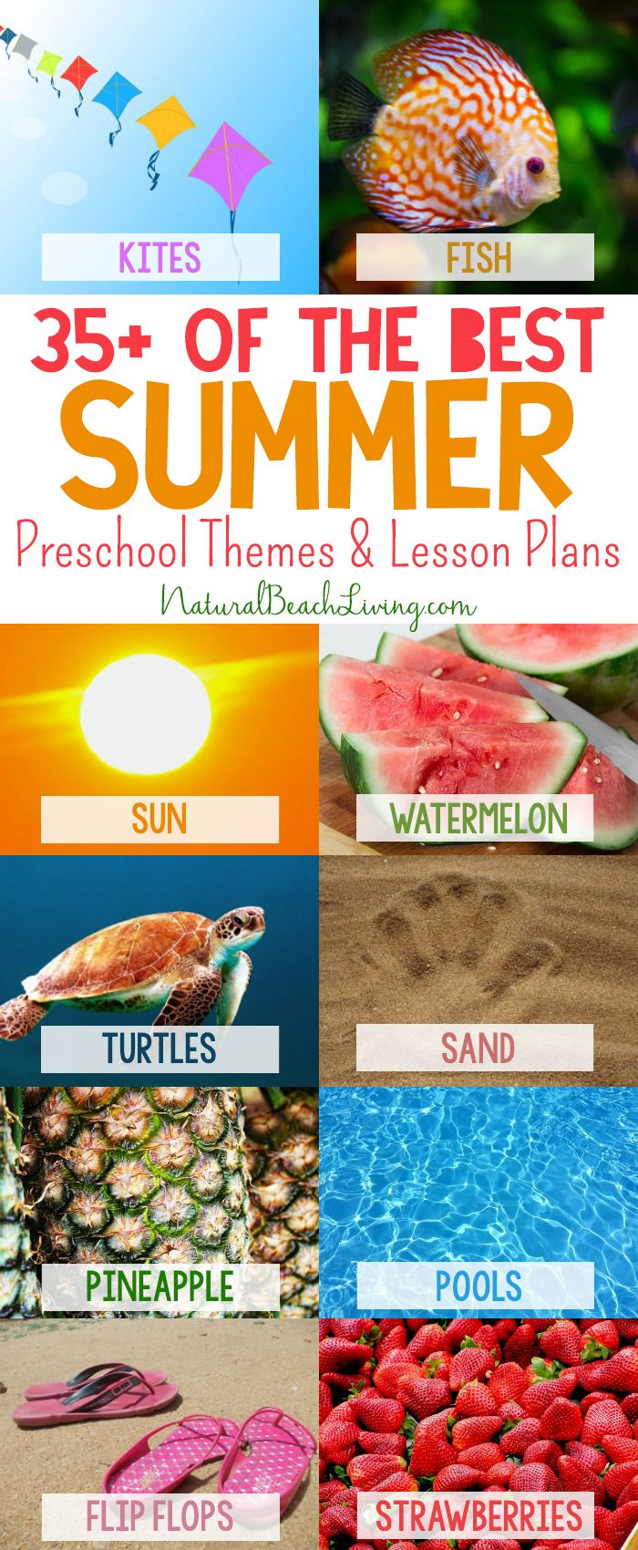 35+ Best Summer Preschool Themes and Activities, Free Printables, Preschool Lessons and Ideas for the Summer, Summer Camp, Beach, Ocean, Under the Sea and More