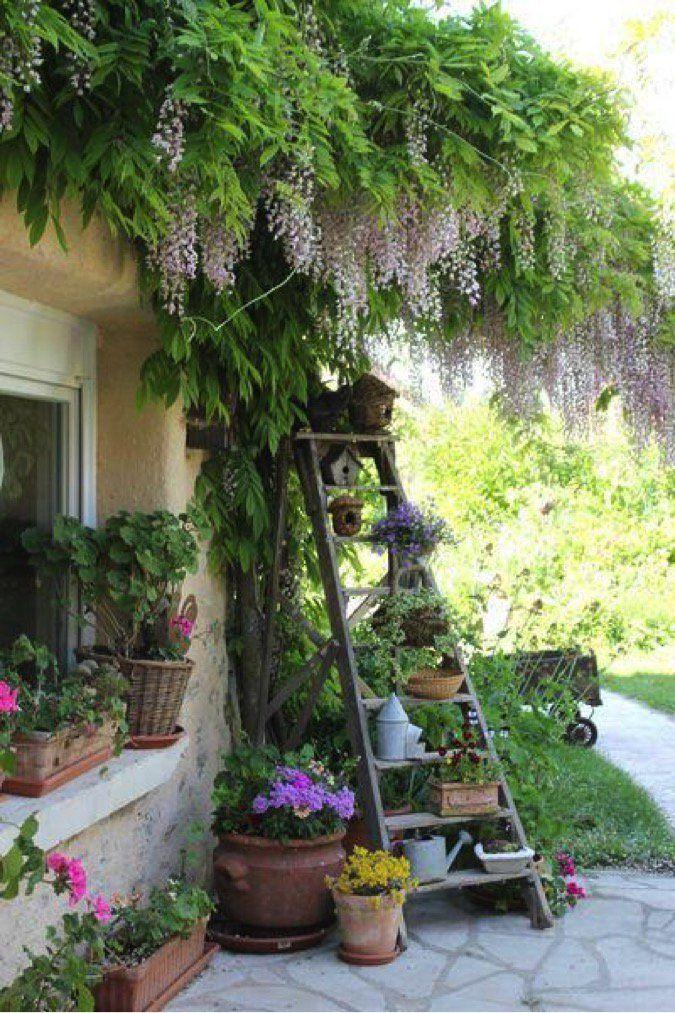 Best 25+ Small Gardens Ideas On Pinterest